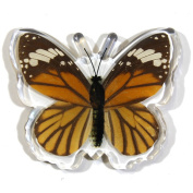 Ed Speldy East Company MT506 Real Bug Common Tiger Butterfly Magnet