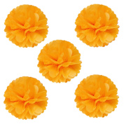 Wrapables Tissue Pom Poms Party Decorations for Weddings, Birthday Parties, Baby Showers and Nursery Decor, Orange, 20cm , Set of 5