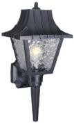 Westinghouse 66860 20cm . Single Light Black Wall Lantern