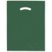 Deluxe Small Business Sales 248-1215-20 30cm x 38cm . Die-Cut Handle Bags Hunter Green