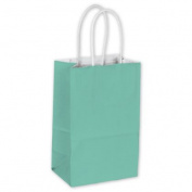 Deluxe Small Business Sales 15-050309-89 5.25 x 8.9cm x 21cm . Cotton Candy Shoppers Aqua