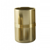 Tatara Group JW5H NuSteel Jewel Gold Finish Tumbler