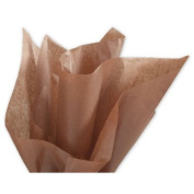 Deluxe Small Business Sales 11-01-69 50cm x 80cm . Solid Tissue Paper Raw Sienna