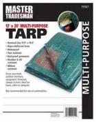Master Tradesman MT 12 X 20 GREEN-BROWN 3.7m x 6.1m Polyethylene Storage Tarp Cover - Hunter Green & Brown