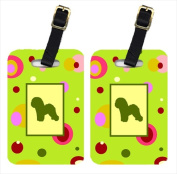 Carolines Treasures CK1108BT Bichon Frise Luggage Tag - Pair 2 10cm x 7cm .