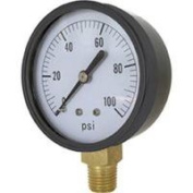 Valley Industries Dry Gauge Ss 2 Face CS-1124DAB100