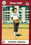 Sharon Andaya Trading Card (Texas A & M) 1991 Collegiate Collection No.45 Softball