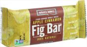 Natures Bakery Stone Ground Whole Wheat Fig Bar Apple Cinnamon - 60ml
