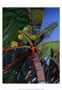 Old World Prints OWP76713D Coconut Palm Poster Print by Shari Erickson -13 x 19