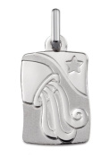 Zodiac Aquarius Pendant Silver 925/1000-Height