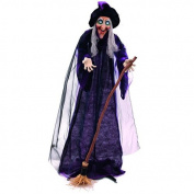 Halloween witch animated,