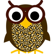 Ashley Productions ASH10009 Magnetic Whtboard Eraser Wise Owl