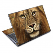 DecalGirl AC72-WARRIOR Acer Chromebook C720 Skin - Warrior
