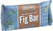 Natures Bakery Stone Ground Whole Wheat Fig Bar Blueberry - 60ml