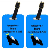 Carolines Treasures AN1121BT Briard Luggage Tags Pair - 2