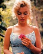 Hot Stuff 1994-24x36-CE Marilyn Flower Poster