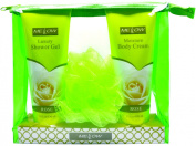Mellow 2 Piece Shower Gel and Body Lotion Gift Set, Rose