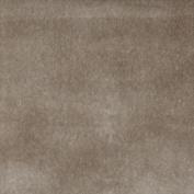 Designer Fabrics C862 140cm . Wide Light Grey Solid Plain Velvet Automotive Residential And Commercial Upholstery Velvet