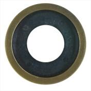 Blue Flame DFR.04 Flange Ring - Antique Brass