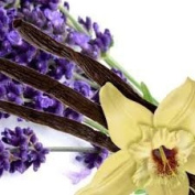 Lavender Vanilla Blend Fragrance Oil - 30ml