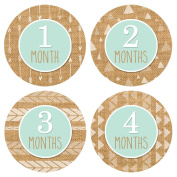 Baby Monthly Stickers Tribal Style - Baby Boy Milestone Onesie Stickers - 1-12 Months - Pinkie Penguin