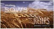 B & H Publishing Group 465153 Offering Envelope-Wheat Field 4 Colour