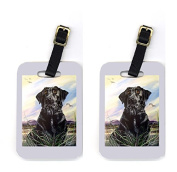 Carolines Treasures VLM1021BT Labrador Luggage Tags Pair Of 2