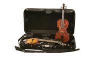Guardian CV-032-M Violin and Mandolin Case Multi-Coloured