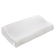 Denshine 30x50 Sleep Slow Rebound Memory Foam Pillow Cervical Health Care