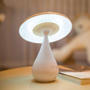 E Support Mushroom Touch Dimming LED Desk Lamp Anion Air Purifier Rechargeable Energy Saving Book Light with Touch Adjustable Brightness