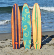 Longboard Surfboard Growth Chart