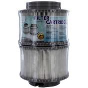 MSPA Spa Filter Cartridge