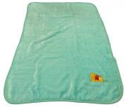 Disney Winnie the Pooh Decorative Baby Blanket Throw - Mint w/ Inch Worm
