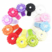 Tinksky 12pcs Different Colours Baby Girls Daisy Flower Clip Photo Props