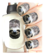 Easy to use, High Quality Nail Art Decal Stickers For Every Occasion Sloth Wrap