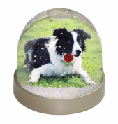 Border Collie Dog with Red Rose Snow Dome Globe Waterball Gift