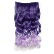 Awbin 60cm Dark Purple to Light Purple Ombre Colour Curly Curl Wavy Full Head Clip in Hair Extensions Wig
