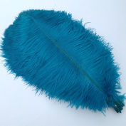 Sowder Turquoise Ostrich Feathers 18-20inch(45-50cm) for Home Wedding Decoration Pack of 10pcs