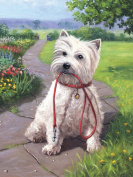 Junior Small Paint By Number Kit 22cm x 30cm -Time For A Walk