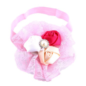 Itaar Baby Girl Flower Headband Lace Lovely Infant Hair Baby Accessories Light Pink