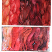 Living Dreams Fire Colour Sampler, Hand Dyed Felting Wool Roving Fibre for Needle -, Soap - and Wet Felting, 5 Colours