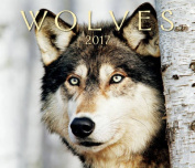 Wolves 2017