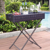 Crosley Furniture Palm Harbour Outdoor Wicker Butler Tray