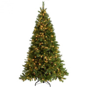 WeRChristmas 2.1m Victorian Pine Pre-Lit Multi-Function Christmas Tree with 500 Warm White LED Lights/ 8 Setting Controller/ Easy Build Hinged Branches