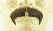 Rubies Winchester Moustache MEDIUM BROWN - no. 2028 - REALISTIC! 100% Human Hair