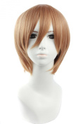 Icoser 30cm 190g Brown Short Synthetic Hair Anime Cosplay Party Wigs for Women