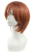 Icoser 30cm 200g Light Brown Short Synthetic Hair Anime Cosplay Party Wigs for Women
