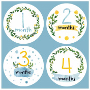 Baby Monthly Stickers in Watercolours - Baby Milestone Onesie Stickers - 1-12 Months - Pinkie Penguin