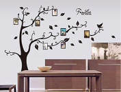 Black Leaves Tree Wall Decal Home Sticker Paper Removable Living Room Bedroom Art Picture DIY Mural Girls Boys Kids Nursery Baby Playroom Decoration + Gift Colourful Butterflies