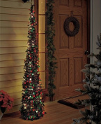 Affordable, Collapsible 170cm Lighted Christmas Trees in Green/red for Small Spaces with Timer